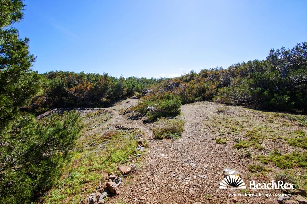 Spain - Comarques gironines -  Llanca - Beach Petita del Futaner