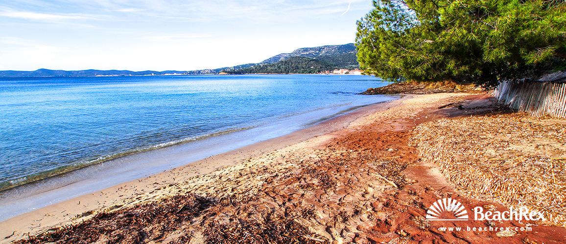 Beach du Cap Ngre Le Lavandou Var France Beachrexcom