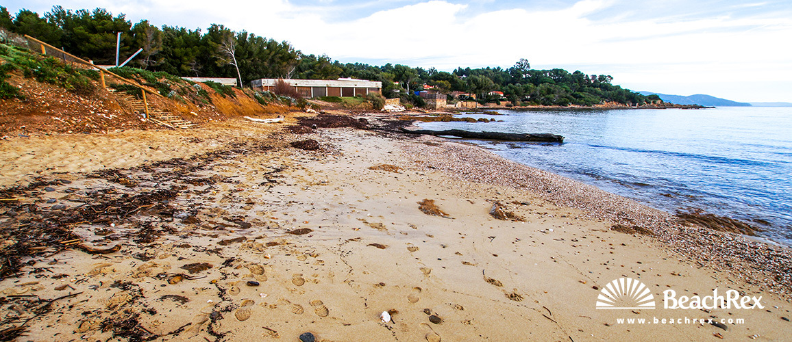 France - Var -  Bormes-les-Mimosas - Beach du Gaou