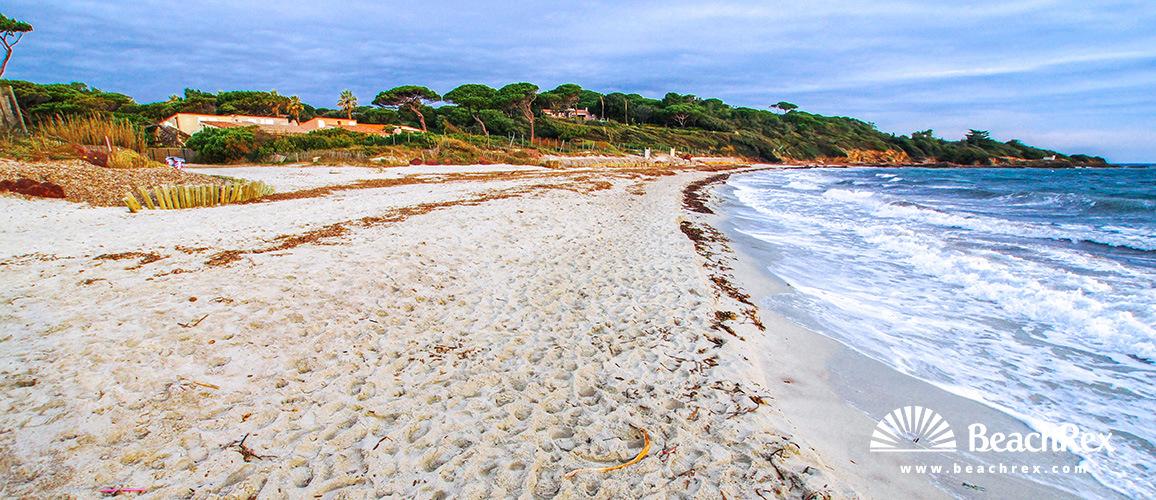 France - Var -  Saint-Tropez - Beach des Salins