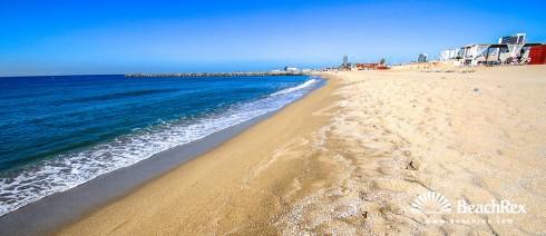 Spain - Àmbit metropolità -  Barcelona - Beach Llevant