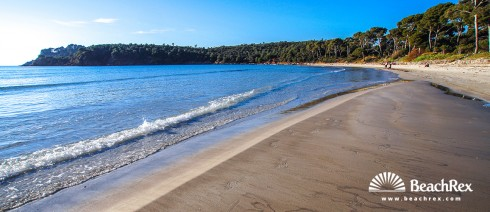 France - Var -  Bormes-les-Mimosas - Beach de l'Estagnol