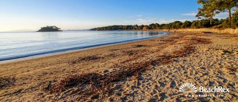 France - Var -  Bormes-les-Mimosas - Beach de Léoube