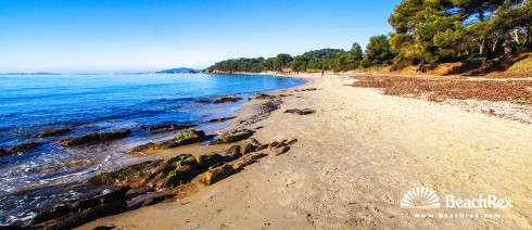 France - Var -  Bormes-les-Mimosas - Beach du Pellegrin
