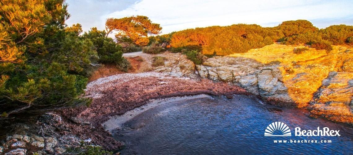 France - Var -  Six-Fours-les-Plages - Beach du Abrielle