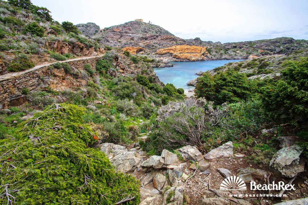Spain - Comarques gironines -  Cadaqués - Beach Jugadora