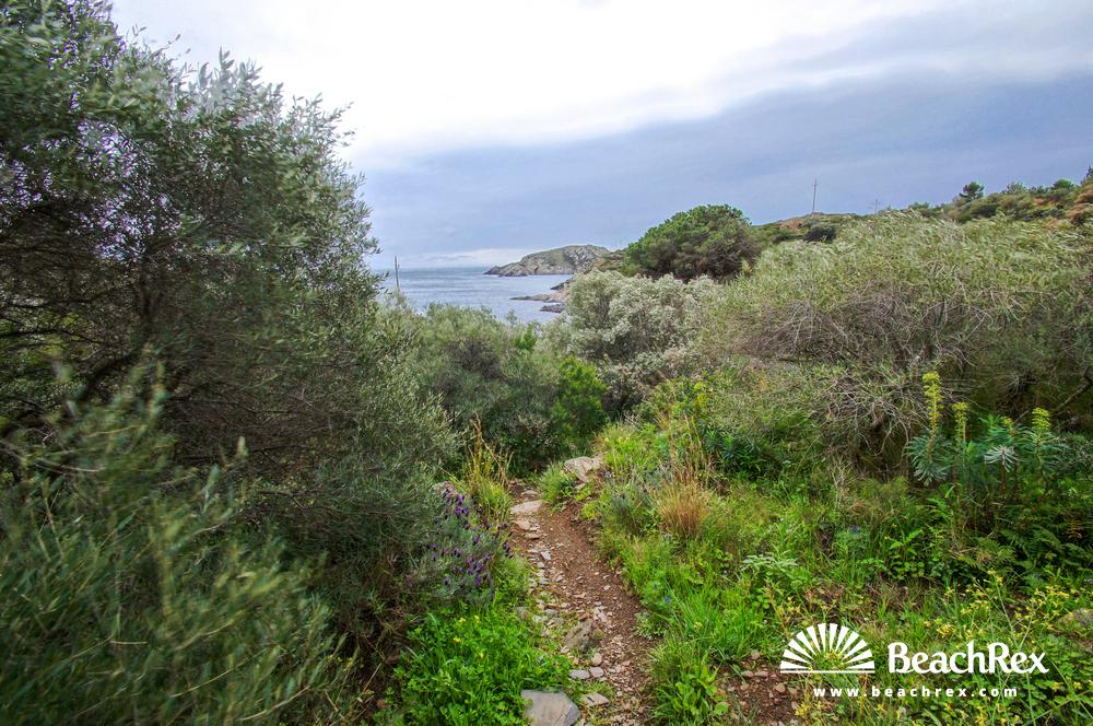 Spain - Comarques gironines -  Cadaqués - Beach de Sant Lluís
