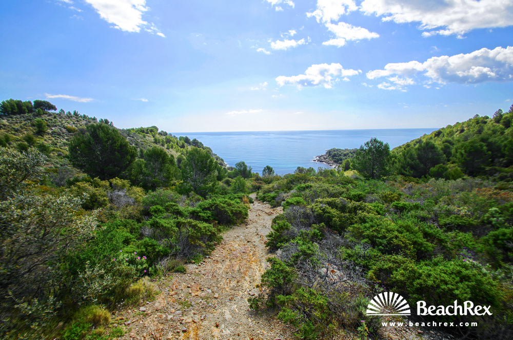 Spain - Comarques gironines -  Roses - Beach Murtra