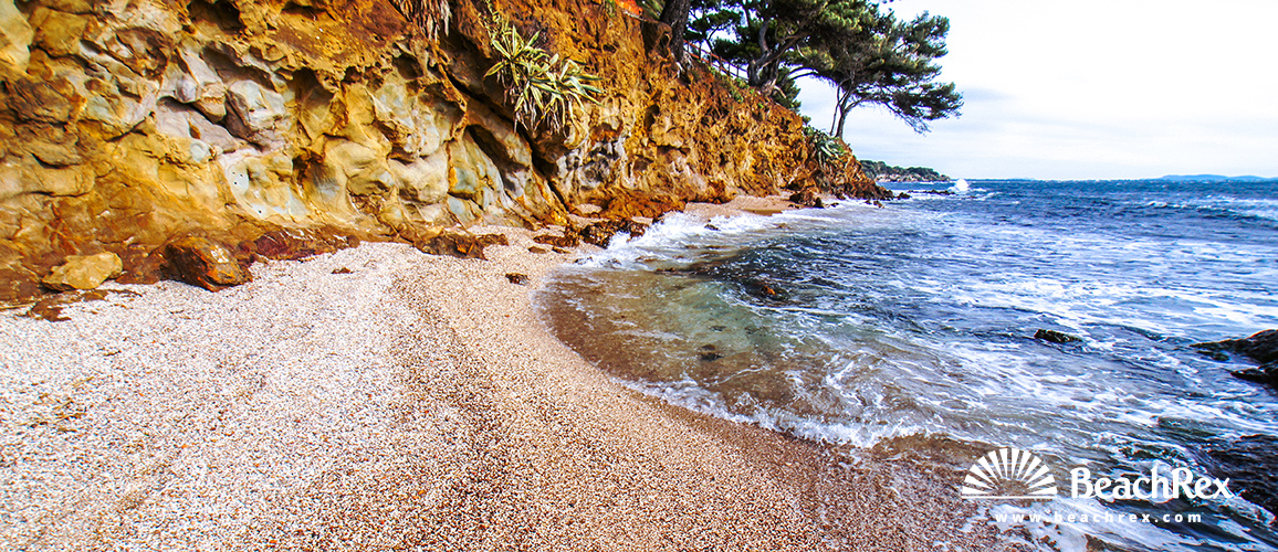 France - Var -  Carqueiranne - Beach des Pins Penchés