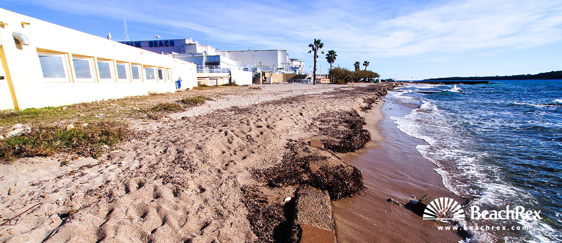 France - AlpesMaritimes -  Cannes - Beach Palm Beach