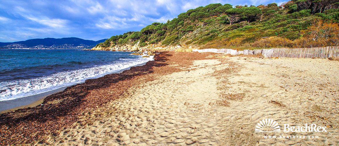 France - Var -  La Croix-Valmer - Beach des Brouis