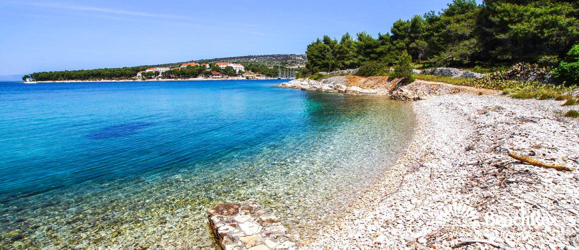 Croatia - Dalmatia  Split - Island Brač -  Milna - Beach Pasika