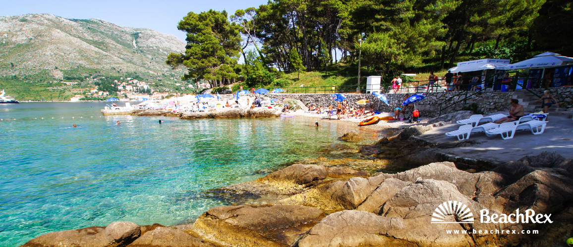 Croatia - Dalmatia  Dubrovnik -  Cavtat - Beach Rat