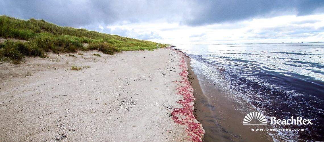 Denmark - Nordjylland -  Ålbæk - Strand Bunken