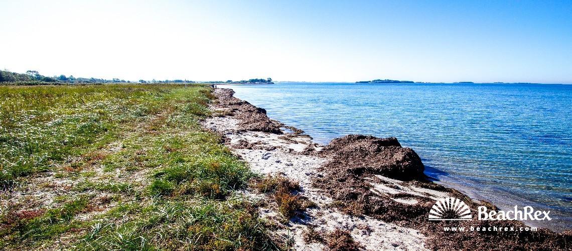 Denmark - Syddanmark - Funen -  Millinge - Strand Damsbo