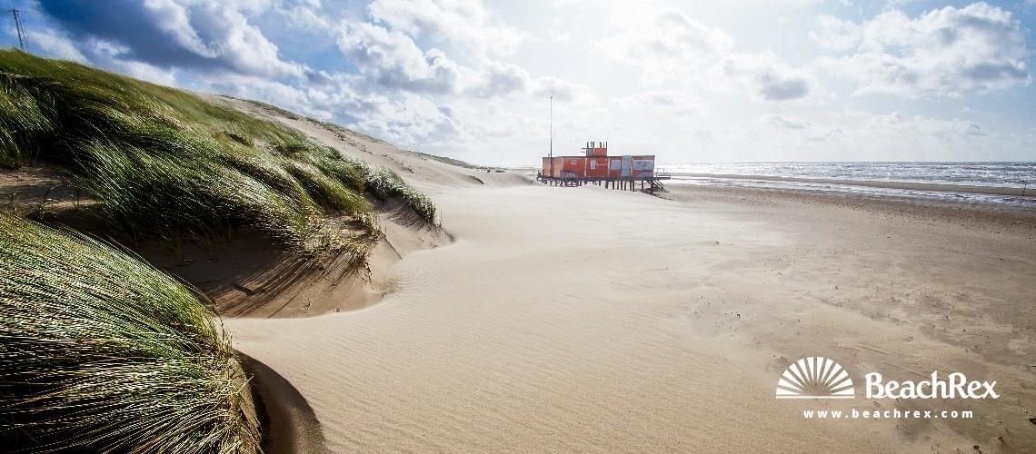 Netherlands - NoordHolland -  Schoorl - Strand Hargen aan Zee