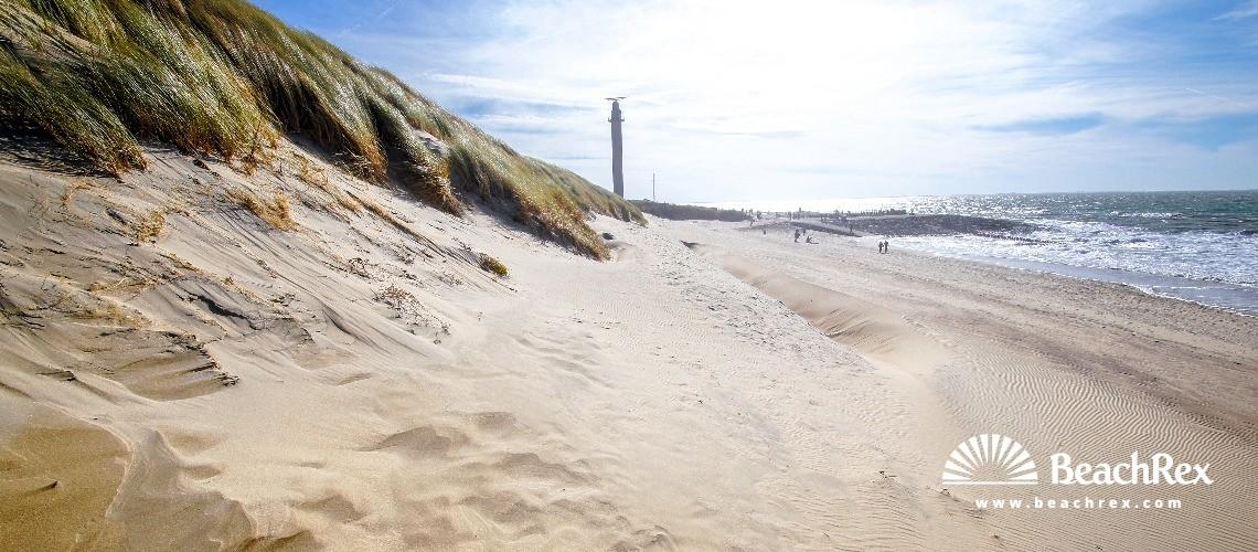 Netherlands - Zeeland -  Westkapelle - Strand Erica